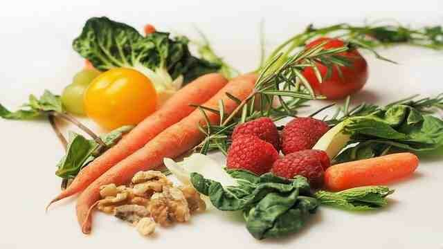 Necessity of Nutrition in Daily LIfe
